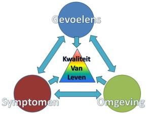 driehoek gevoelens-symptomen-omgeving v2